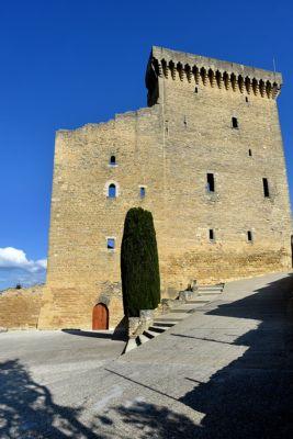 Le château de Châteauneuf-du-Pape - Vue extérieure